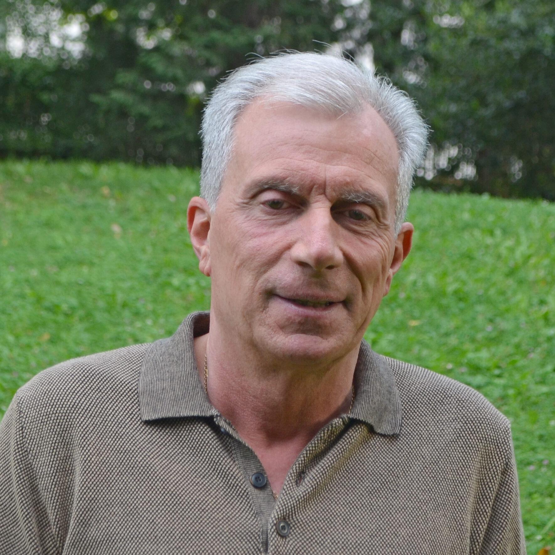 Merler Dario